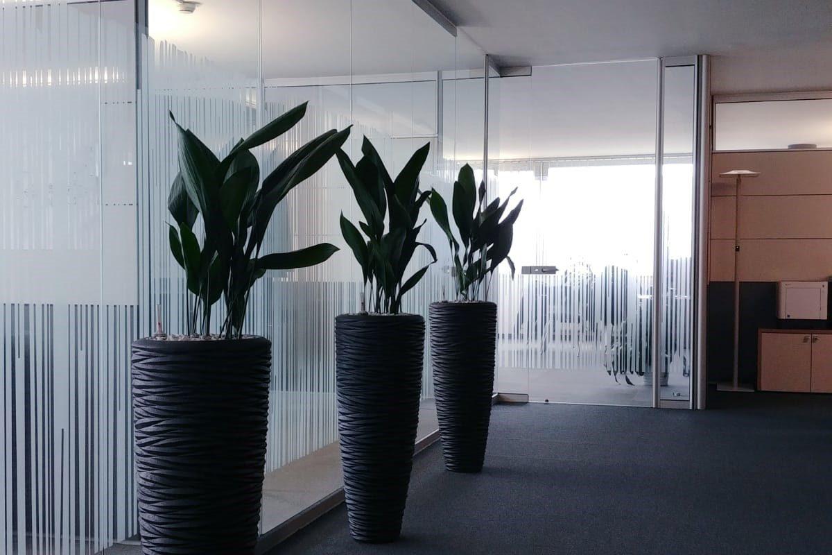 Sichtschutzfolie Büro Linz