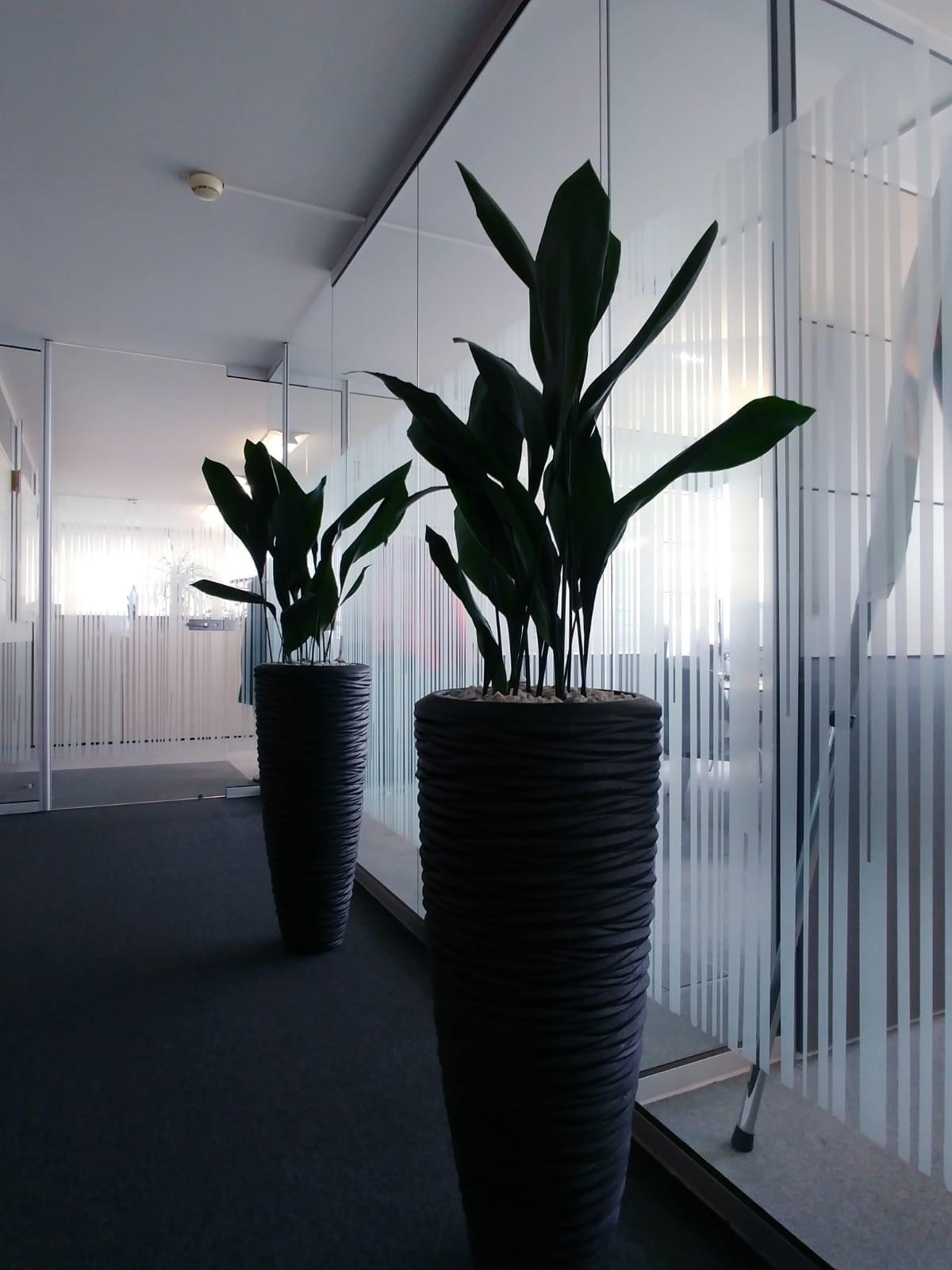 Sichtschutzfolie streifen milchglas